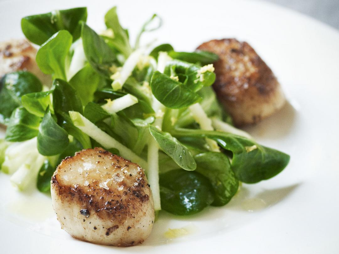 Pan- Fried Scallops with Crunchy Apple Salad